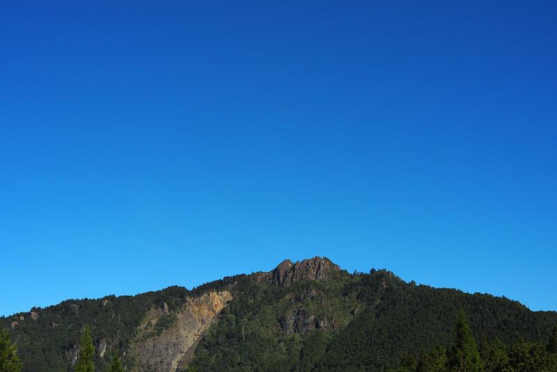 Alishan 阿里山|我嘉後山 Chiayi