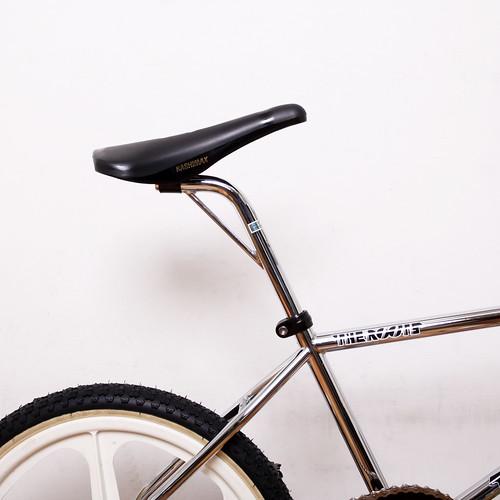 How I Roll The Roots / 20inch BMX CP / skyway Tuff Wheel Coaster brake Custom