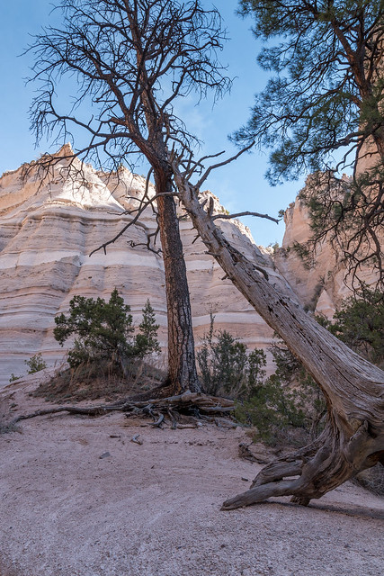 Kasha-Katuwe Tent Rocks National Monument, New Mexico (1 von 1)