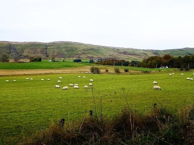 Strathblane Valley, Scotland