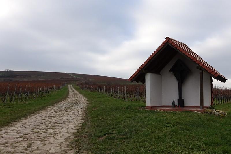 In den Weinbergen - von Gau-Algesheim zur 14-Nothelfer-Kapelle (Belichtungszeit: 1/200, Blende: 5,6, Brennweite entsprechend 35 mm-Kleinbild: 40)