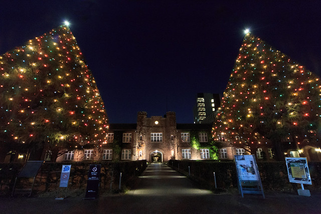 立教大学 クリスマスツリー 2016