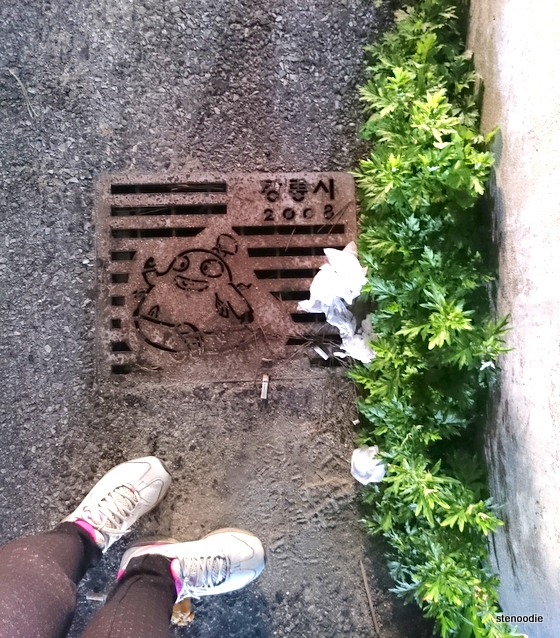 sewer cover in Gyeongpo Beach