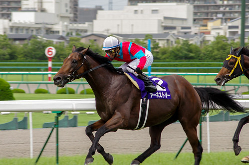 Tetsuzou Sato jockey & Earnestly 2011.6.26 Takaraduka Kinen