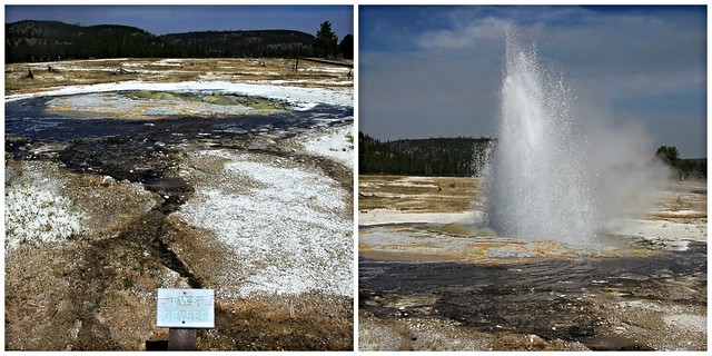 Jewell_Geyser_Collage