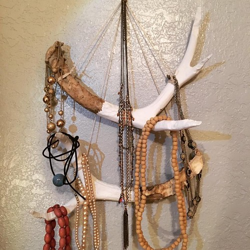 A few years ago, my wife's aunt and uncle gave me a couple of deer antler sheds. They'd been partially munched on by animals, so weren't great for mounting. I made them into a necklace rack for my wife today.