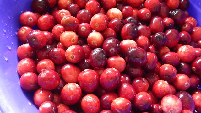 Citrus Cranberry Sauce 8