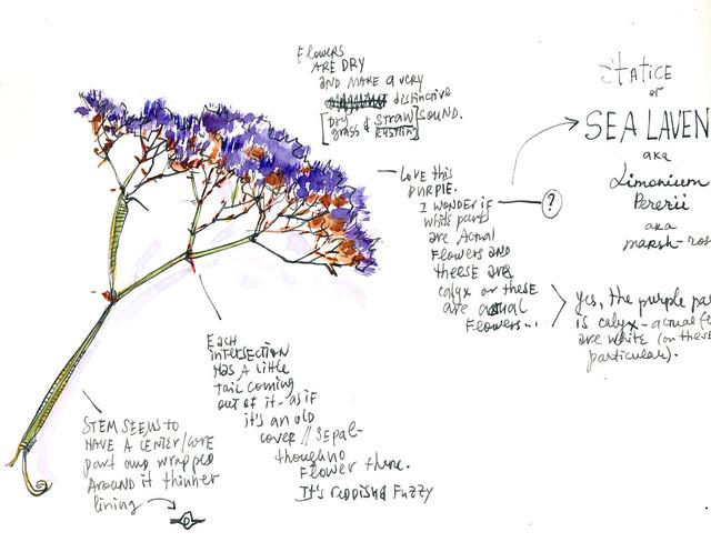 Sketchbook #100: Flowers