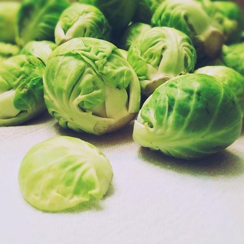 December 18 - Something green