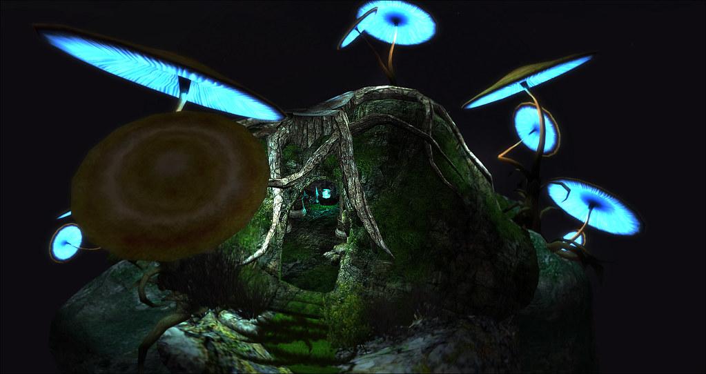 Glowing fungi