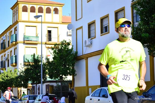 """Media Maraton """"Tierra y Olivo"""" 2016 Km 4 y Meta (Ana Gutierrez)"""