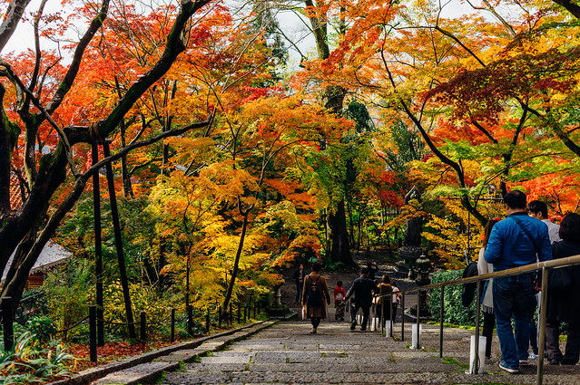 Kyoto_Eikando_11