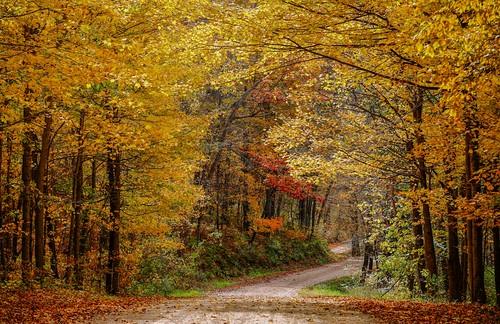 Wisconsin Autumn Backroads