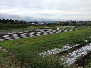 Organic farm Shiga Prefecture Japan