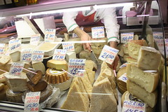all the delicious cheese