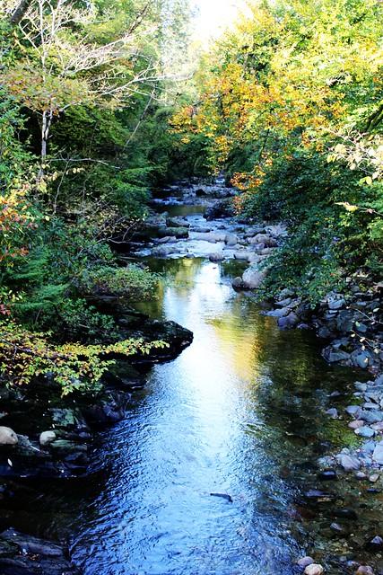 River Kinglas at Ardkinglas Woodland Garden, Argyll, Scotland.