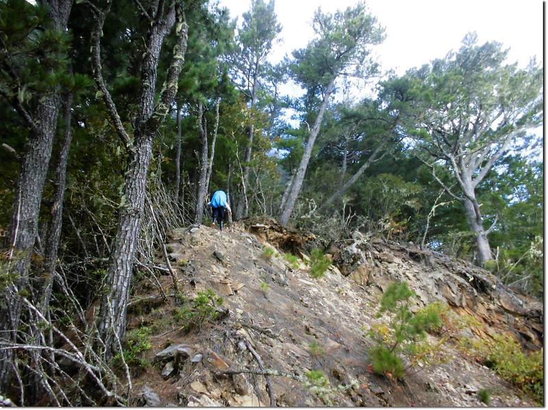登治茆南峰崩壁區 1