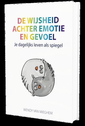 Boekcover_3d_staand_NL-500
