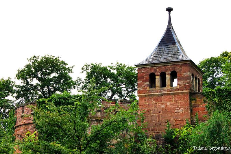 Стена замка в окружении деревьев
