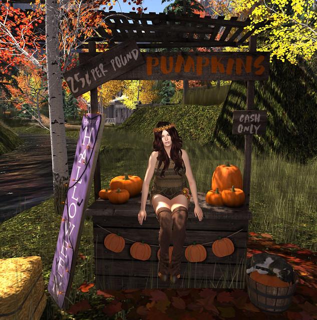 Pumpkin Queen, Woodstock clothing- NSP @ Boho Fair. Photo taken @ Paramour