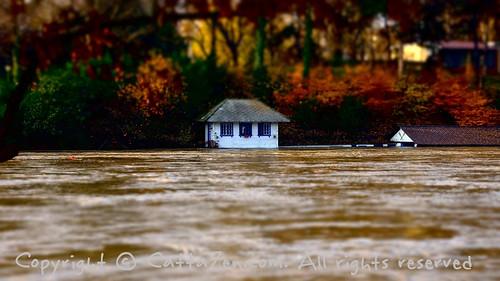 Alluvione Torino