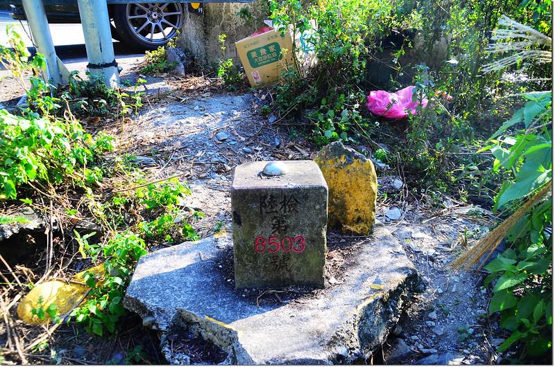 忠勇橋聯勤測量隊一等水準點(# 陸檢8503 Elev. 920 m) 2