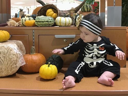 Halloween is close
