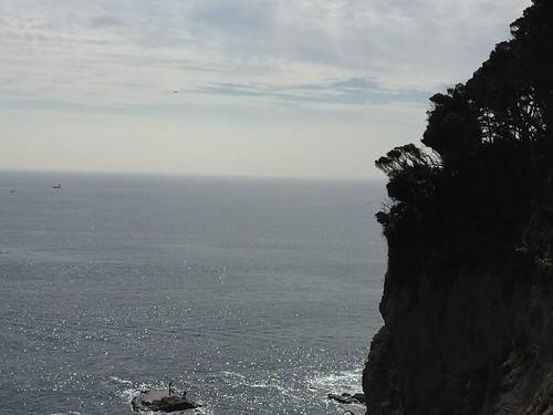 江ノ島でリアルラプラス発見?