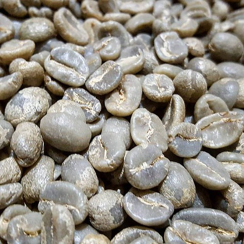 John has been roasting for ya! The greens in the photo: A beautiful coffee from the Recinos family in Guatemala.