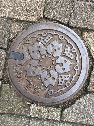 東京の下水道のマンホールの蓋
