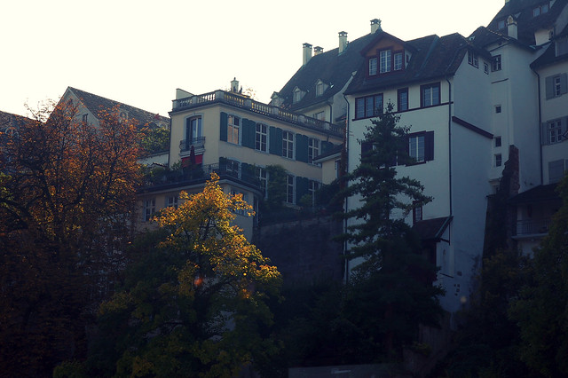 sur le Rhin