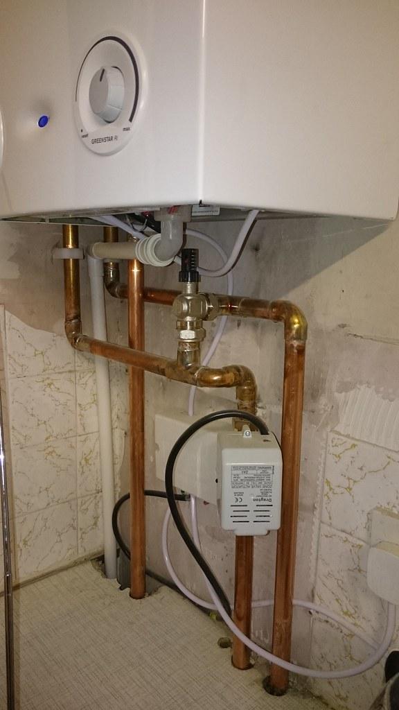 Boiler Room Accountant