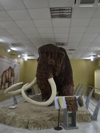 eco museum obiective turistice ruse 1
