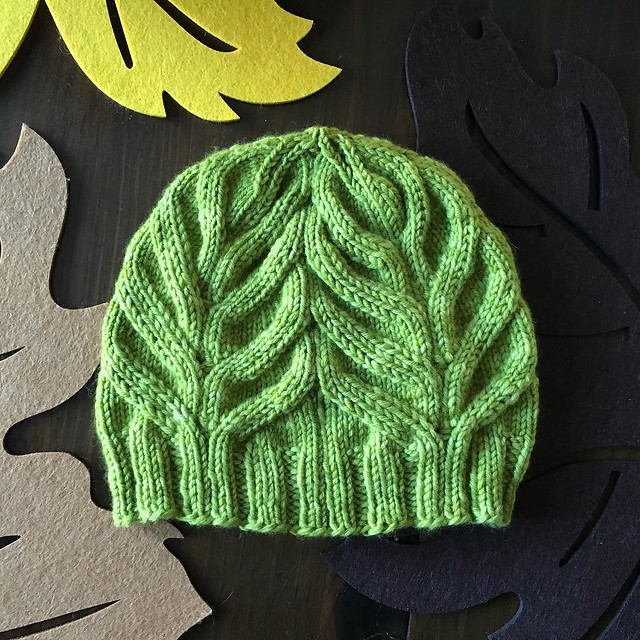 Magnolia hat. Will be nice to be reminded of green foliage 5 months into winter. #magnoliatattoo #knitting #hatknitting #malabrigorios #green