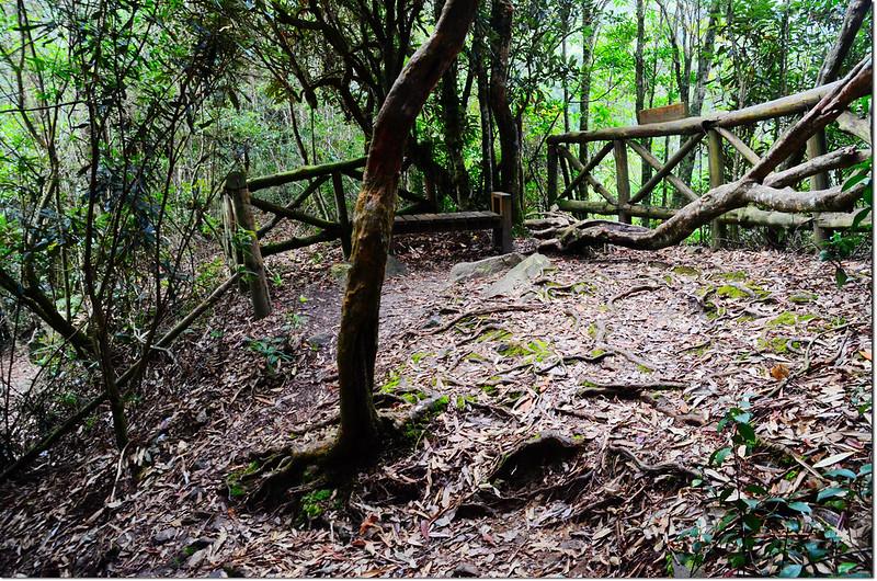 橫嶺山登山步道休息平台
