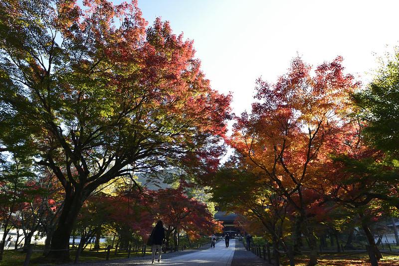 京都・南禅寺・紅葉