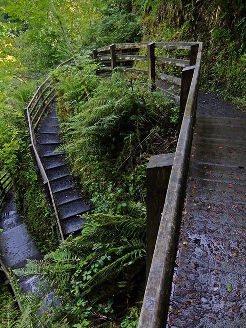 A Wild Waterfall Walk in the Antrim Glen of Northern Ireland, UK