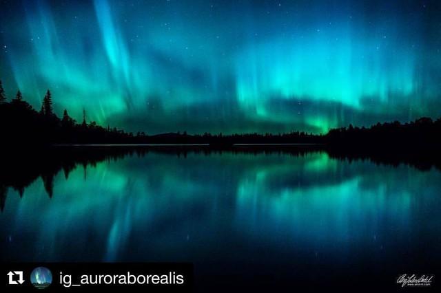 Ble delt av @ig_auroraborealis 😃Utrolig gøy å bli delt av en hub med så mye kvalitetsbilder.Sjekk de ut👍  Got a share from  @ig_auroraborealis Exciting to be shared from a hub with so many quality shots😃Check them out😊
