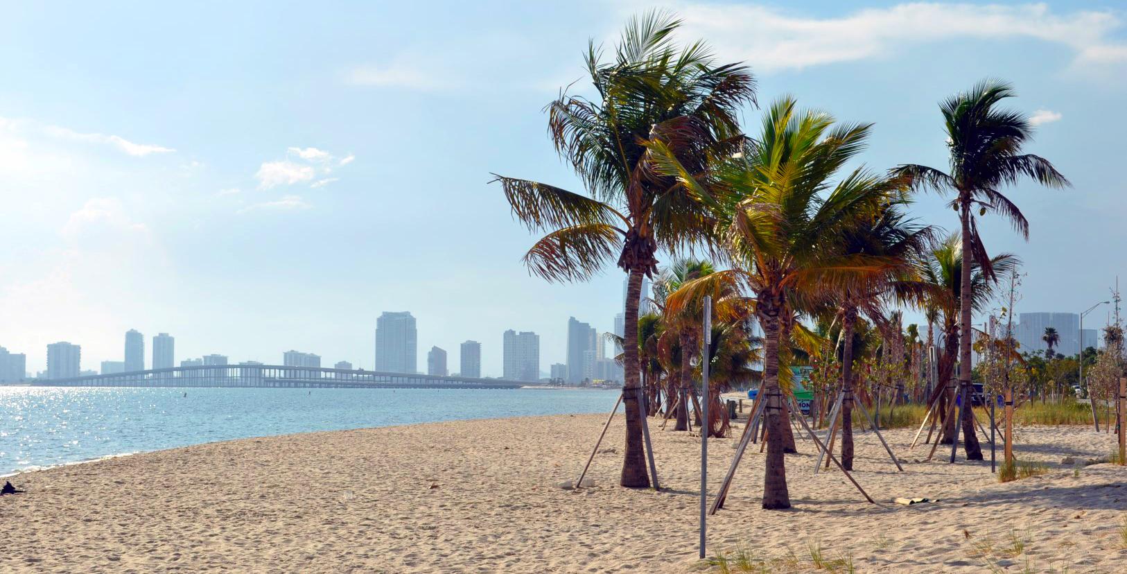 Qué hacer y ver en Miami, Florida Qué hacer y ver en Miami Qué hacer y ver en Miami 31012053710 592dba416b o