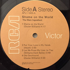 THE MAIN INGREDIENT:SHAME ON THE WORLD(LABEL SIDE-A)