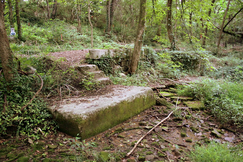 Remains of Lockeland Spring Water bottler