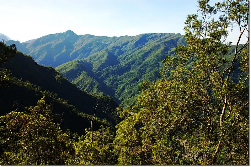 田良井西峰南眺鱈葉根山