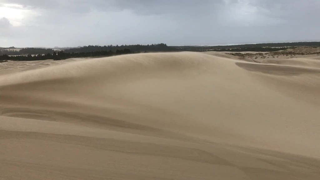 Wild wind on the dunes