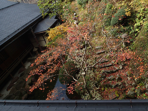 Shojoshin-in Koyasan temple stay balcony view