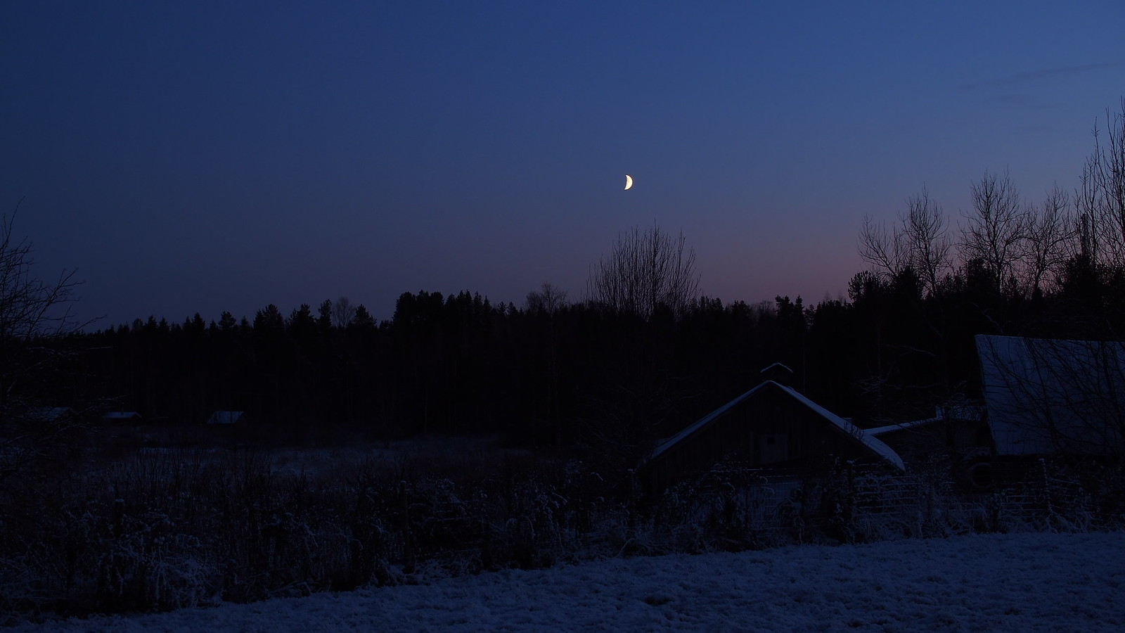 6.11. Talvinen iltapäivä.