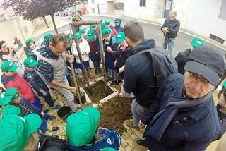 Noicattaro. Festa dell'Albero 2016 front