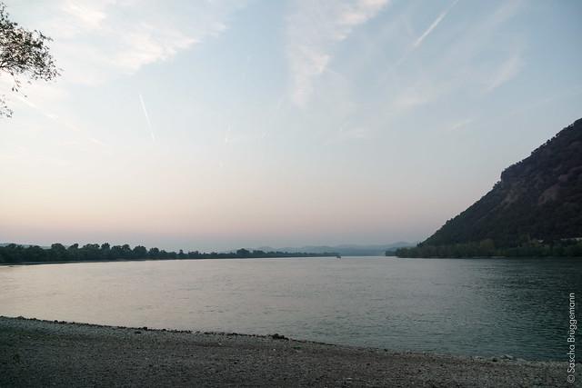 am Donauknie