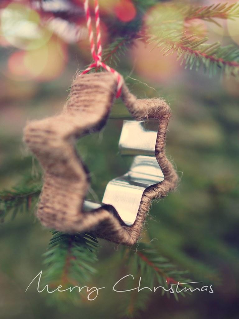 joulukoriste-piparimuotista