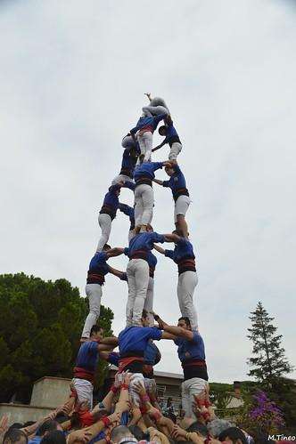 Trobada de Colles Castelleres del Baix Llobregat, 2016