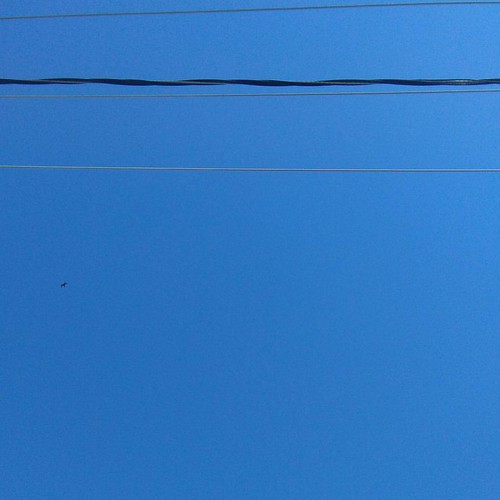 Blue sky with wires #toronto #blue #sky #wires #dufferinstreet #dupontstreet